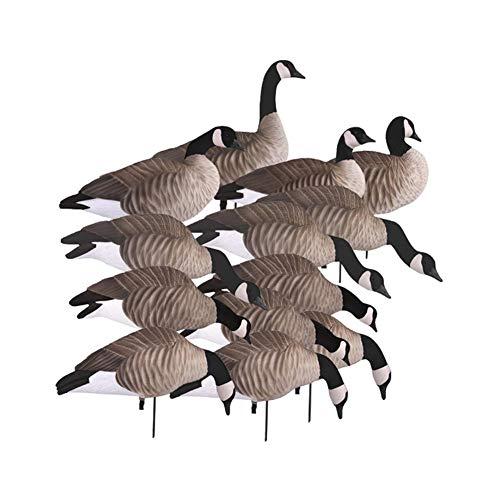 10 best goose decoys full body 12 pack for 2021