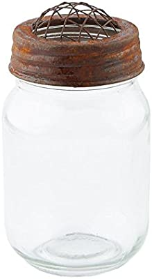 Factory Direct Craft Small Mouth Decorative Mason Jar with Rusty Flower Frog Lid