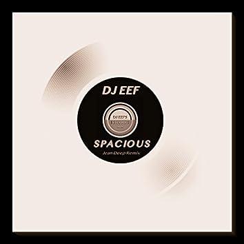 Spacious (Jean Deep Remix)