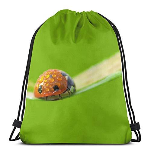Perfect household goods Ladybug Nature - Mochila ligera con cordón, para gimnasio, viajes, yoga, informal, para senderismo, natación, playa