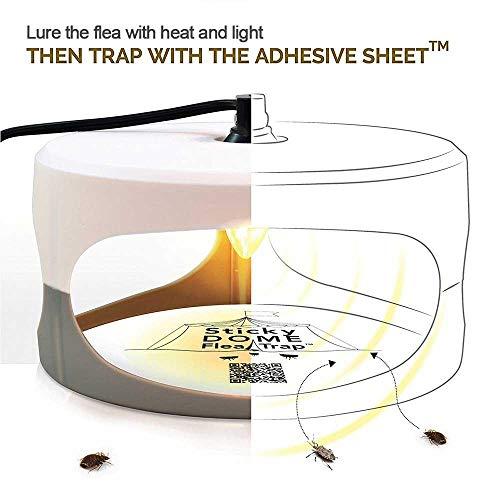 KOBWA Flohfalle, Elektronische Sticky Dome Flohfalle mit 2 Sticky Discs und 2 Glühbirnen, Schädlingsbekämpfung für Haus und Haustiere - 5