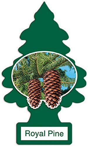 LITTLE TREES Car Air Freshener - Hanging Tree Provides Long Lasting Scent for Auto or Home - Royal Pine, 24 count, (4) 6-packs