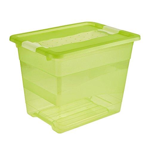"""Keeeper Boîte de rangement avec couvercle /""""Cornelia/"""" 24 L Vert Clair Boîte en plastique"""
