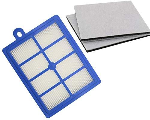 LXY Filtre d'aspirateur lavable - 1 filtre HEPA H12 H13 + 2 filtres moteur en coton compatible avec les aspirateurs Philips Electrolux AEG