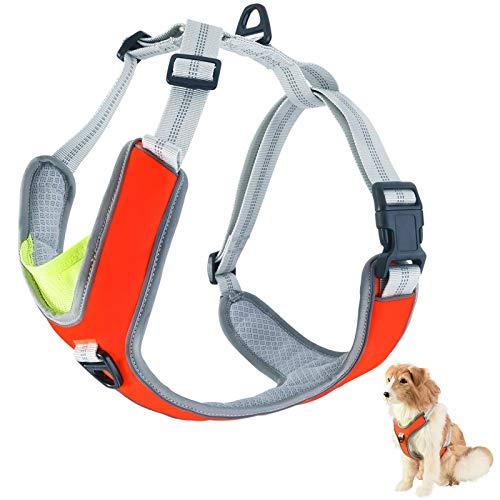 Furpaw Hundegeschirr, Vest Geschirr Mesh im Orange Atmungsaktiv Reflektierend, Brustgeschirre aus Nylon Oxford für Mittelgrosser Hund