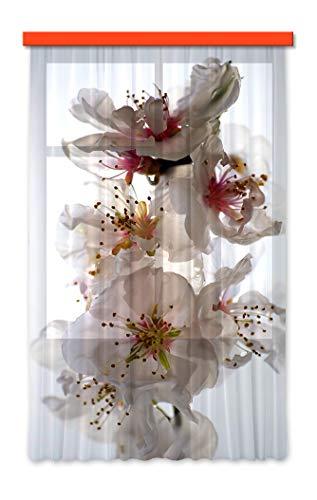 AG Design FCSL 7506 Tende-Stampa Foto 3D, Tessuto, Multicolore, 140 x 245