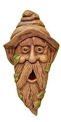 cute birdhouse designs - bearded elf