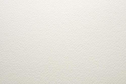 10 x Arches Aquarelle 185gsm (90lbs) - NOT - Full Imperial (56x76cm / 22x30