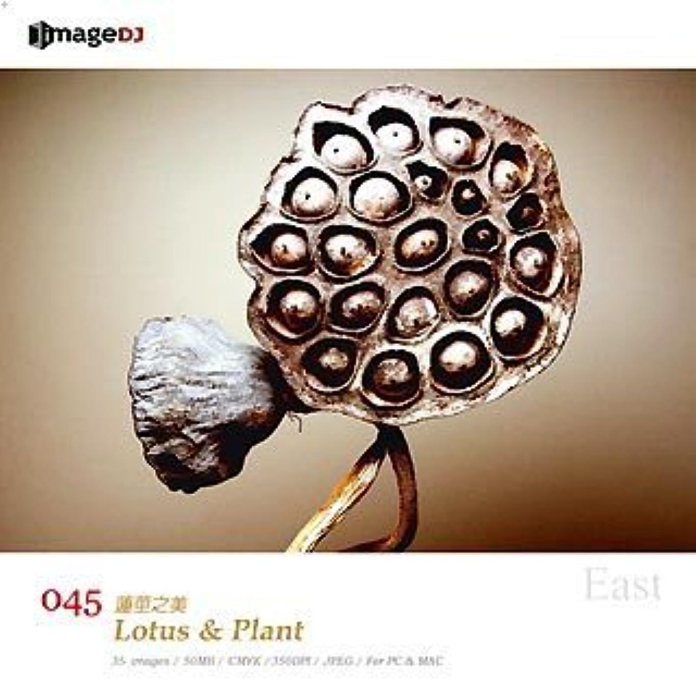コショウそのライオンEAST vol.45 蓮と植物 Lotus & Plant