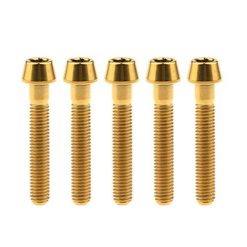 Los tornillos 5 x M5 Llave Allen Perno de cabeza cónica tor