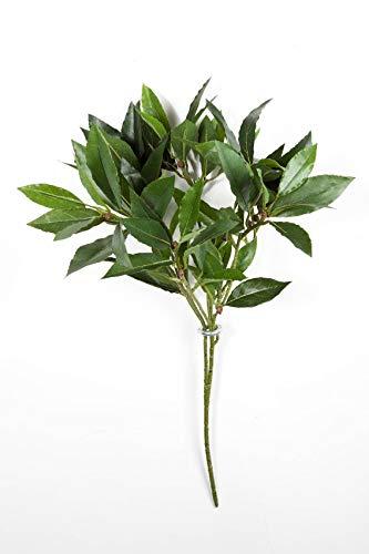 artplants.de Rama de Laurel Artificial KAMIRAN con 70 Hojas, Verde, 45cm - árbol - Planta Textil