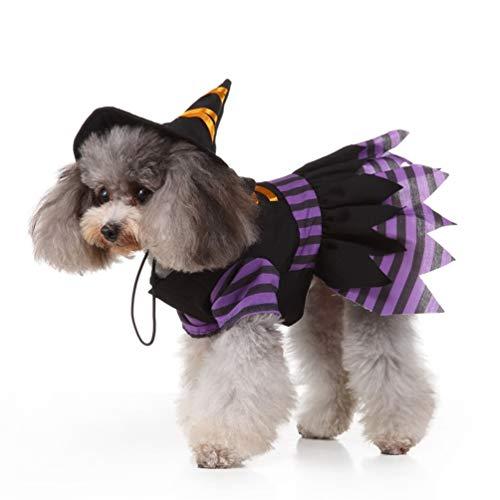 ibasenice Disfraz de Mascota Perrito Bruja - Disfraz de Mascota de Halloween - Ropa de Cosplay de Bruja con Gorra para Perro Gato Mascota Fiesta de Halloween de Cosplay