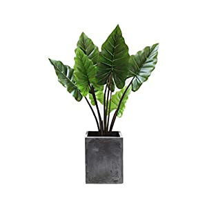 QUD Handmade Artificial Silk Bird of Paradise Tree Potted Plant, Large-Scale Landing Bonsai Flower Arrangement Home Decoration, No Basin 20/4/3