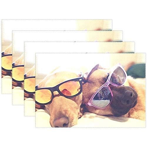 Occhiali Da Sole Cani Il Miglior Prezzo Di Amazon In Savemoney Es