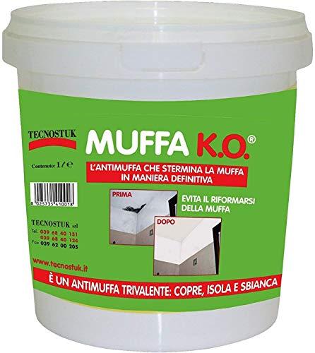 Muffa ko lt 3 Tecnostuk elimina definitivamente la muffa dai muri, si usa direttamente sulle macchie di muffa copre istantaneamente le macchie di muffa e ne evita la riformazione