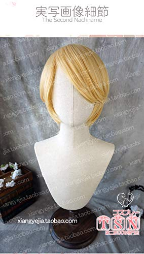Cosplay Perücken Anime Dry Girl Schwester begraben Orange Alex One Piece Sanji Blond Cos Perücke 39