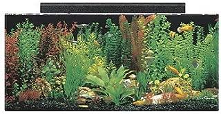 Best 40 gallon hexagon fish tank Reviews