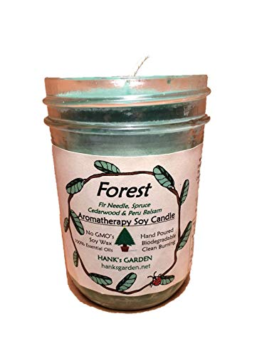 Forest Aromatherapy Soy Wax Candle Jar - 8 oz - Fir Needle, Spruce, Cedarwood & Peru Balsam - Natural, Biodegradable, Earth Friendly, Natural Dyes Wicks, Clean Burn, No Soot (8 oz - Soy Candle Jar)