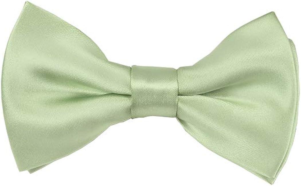 Solid Light Sage Green Men's Pre-Tied Bow Tie