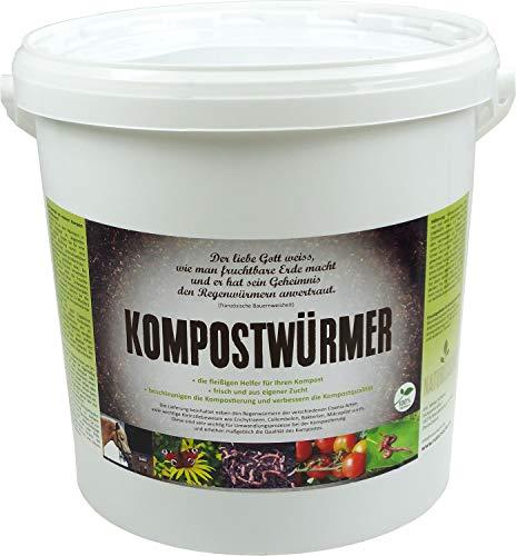 Die Besten kompostwurmer 2020