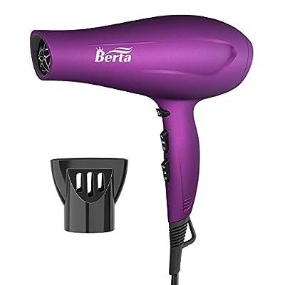Blow Dryer Berta Hair Dryer Salon Professional ...