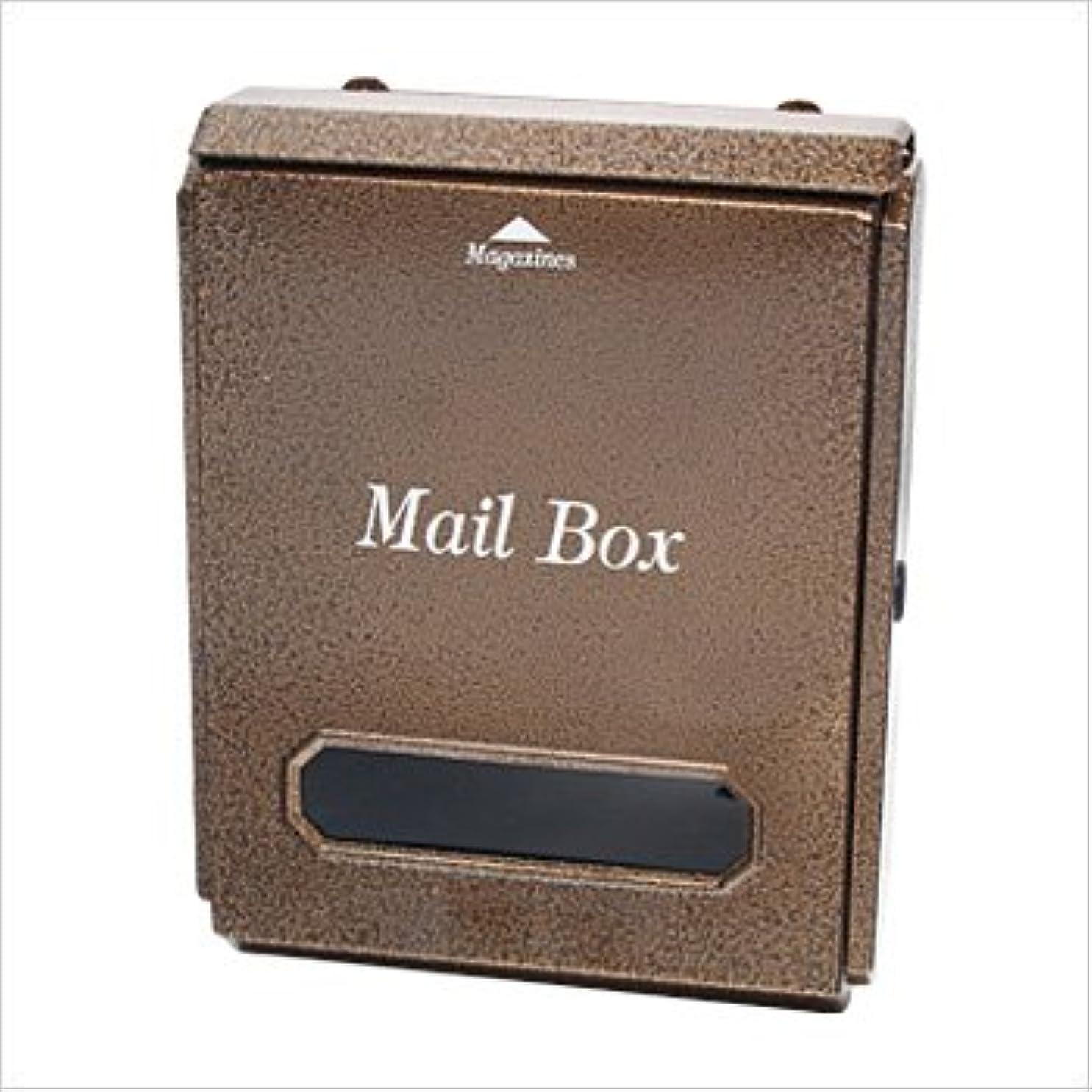 チャンバー憧れ彼女自身LEON (レオン) 壁掛け 郵便ポスト トラディショナルポスト シンプル壁掛けタイプ Mail Box LT-10
