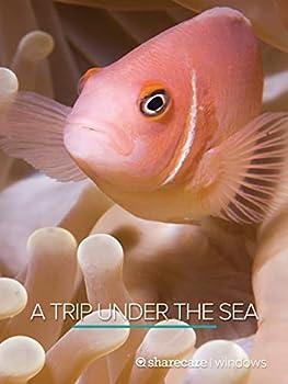 Best underwater background Reviews