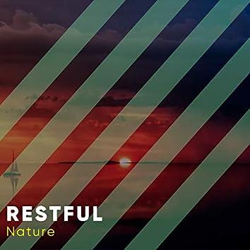 # 1 Album: Restful Nature