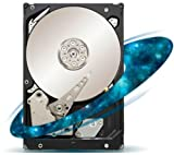 Seagate ST33000650NS Constellation ES.2
