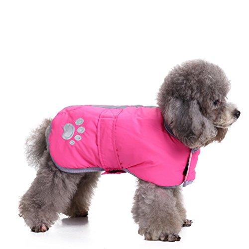 UEETEK Cappotto Riflettente per Cani Giacca Impermeabile Cane Invernale Abbigliamento Animale Domestico - Taglia L (Rosa)