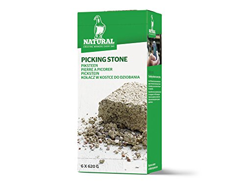 Natural Pickstein 6er-Pack, 620 g
