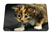 26cmx21cm マウスパッド (子猫縞模様の赤ちゃん恐怖) パターンカスタムの マウスパッド