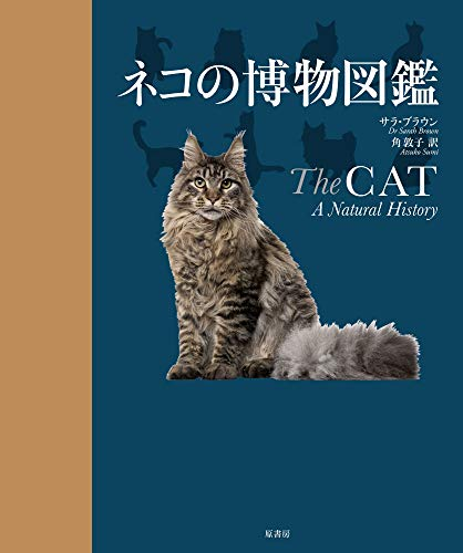 ネコの博物図鑑