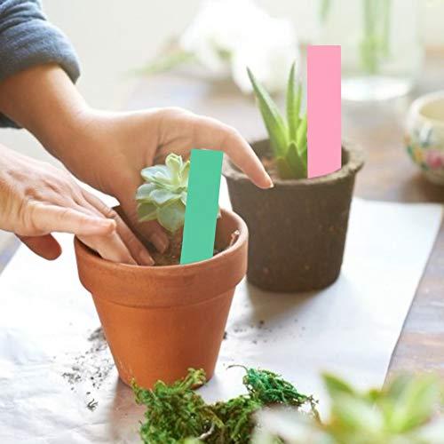 Semiter Prácticas Etiquetas para Plantas, 100 Piezas a Prueba de Agua con una Apariencia Hermosa con diseño de Orificios Marcadores Lant a Prueba de Sol, para Que(Pink, Green)