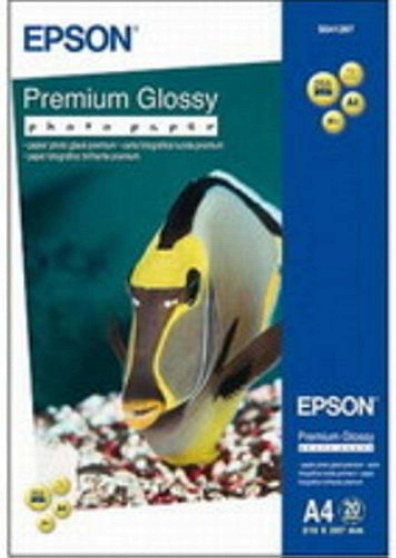Epson 10x15 Premium Glosy Glosy Glosy PhotoPaper, C13S041706 B001JK550U   Die Qualität Und Die Verbraucher Zunächst  97476b