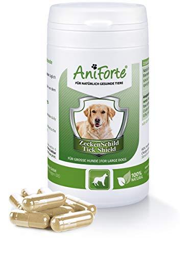 AniForte Pastillas AntiGarrapatas para Perros Grandes más 35kg. 60 cápsulas. Producto Natural. Complejo de Vitamina B que Actúa como Escudo Anti Garrapatas.