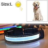 ZXSDペットの首輪 ペットジュエリー用品アクセサリーデコレーション中・大型犬ペット太陽光+ USBは、LEDライトのカラーを充電、ネック円周サイズ:L、50〜60センチメートル(オレンジ) (Color : Pink)