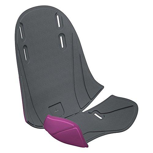 Thule 100404 Zubehör für Fahrradanhänger Dark Grey/Purple