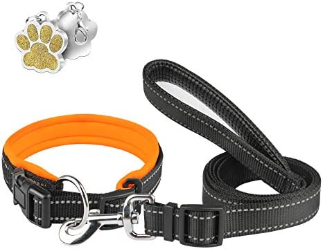 Neoprene Padded Dog Collar and Leash Set Comfortable Leather Handle 5ft Long Dog Leashes for product image