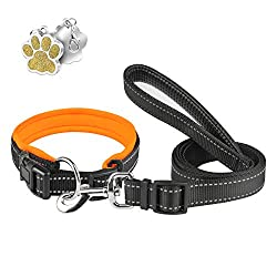 【SUPER SOFT DOG COLLAR & LEAD SET】 - The Collar made of soft neoprene padded, light and soft, breathable and skin-friendly will not hurt your dogs skin. Fast drying without smell. With the same color dog lead. The tag is a free decoration, you can en...
