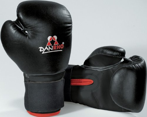 Danrho Boxhandschuhe Ergo Fight Gr. 10 oz rot