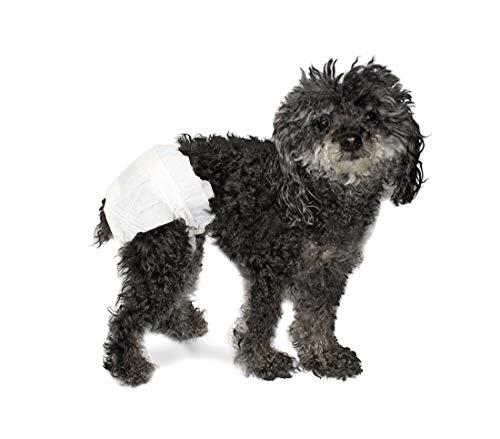 Pack 12 pañales absorbentes para perros capturan olores con ranuras para la cola - XL