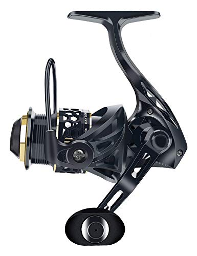 Sea Fishing Reel, The Best Spinning Fishing Reel, Super Smooth 12 Bearing, Lightweight Design Rotary Fishing Reel, Suitable for Freshwater brine (Size : 2500)