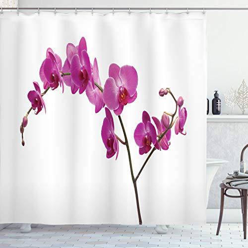 ABAKUHAUS Duschvorhang, Wilde Orchideen Blütenblätter Floral AST Romantische Blume Exotisch Pflanze Natur Kunstdruck, Blickdicht aus Stoff inkl. 12 Ringen Umweltfre&lich Waschbar, 175 X 200 cm