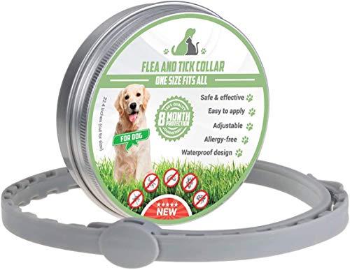 Sonbrille Collar ajustable para perros y gatos, collar de desparasitación, collar de control de plagas para mascotas, protección de 8 meses, resistente al agua