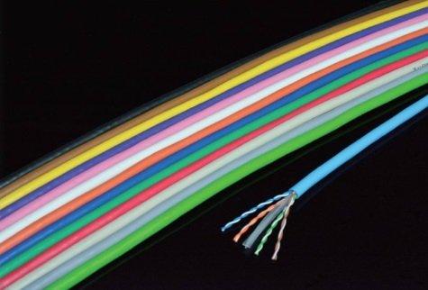 日本製線 環境配慮型Cat6 LANケーブル(300m巻き) EM-NSGDT6 0.5mm-4P 若草