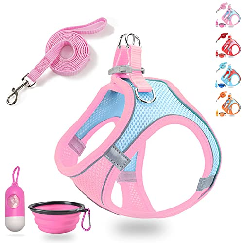 LMOBXEVL Small Dog Harness,Puppy Harness and Leash Set for Walking Escape Proof,Comfortable Air Mesh Dog Vest Harness with Reflective Strip, Step-in Outdoor Pet Vest for Small Medium Breeds
