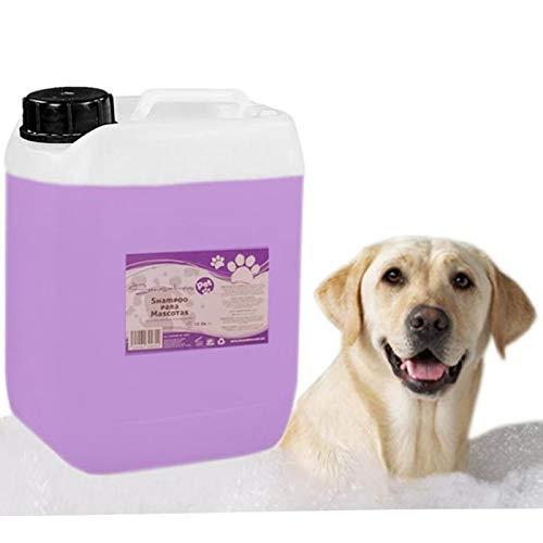 Shampoo Para Mascotas Suave, FreshFun, MXFUF-003, 10L, Lavanda, Perros y Gatos, Liquido, Color Violeta.