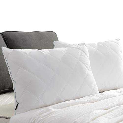 Basic Beyond Soft Quilted Feather Down Pillow (King) All Season White Bed Pillow Soft Firm 2 Pack Down Pillow