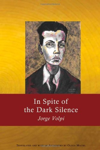 In Spite of the Dark Silence (English Edition)